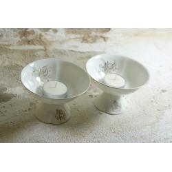 Porcelianinės ledainės